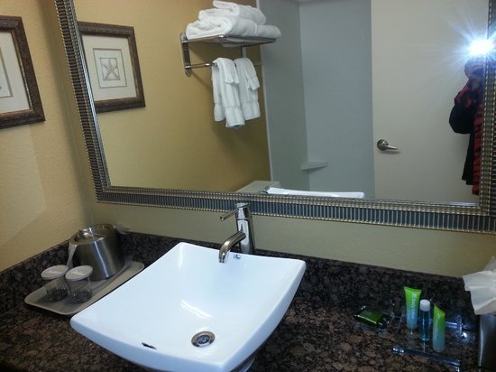 Charleston Airport Hotel: Guest Room First Floor Bathroom