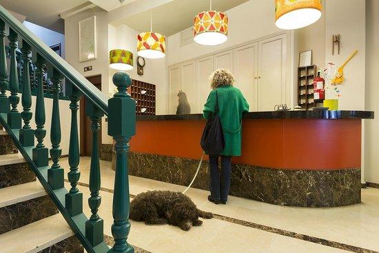 Recepción Hotel San Miguel. Se admiten Mascotas