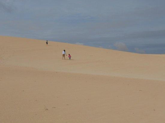 Parque Natural de Corralejo: Dune Corralejo