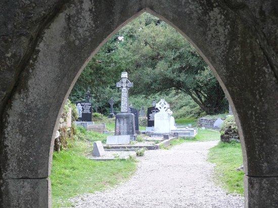 Muckross Abbey: кладбище