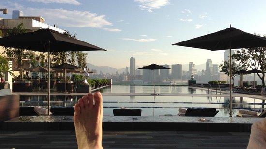 Four Seasons Hostel: プールからの眺め2(朝)