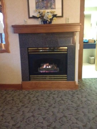 Banff Ptarmigan Inn: Ptarmigan - Fireplace