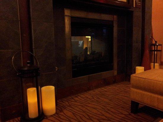 Hilton Garden Inn Scottsdale North/Perimeter Center: Nice fireplace in lobby