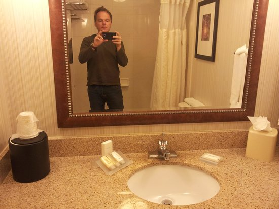 Hilton Garden Inn Scottsdale North/Perimeter Center: Bathroom