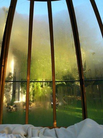 Domaine Jobert : Le matin...vue du lit