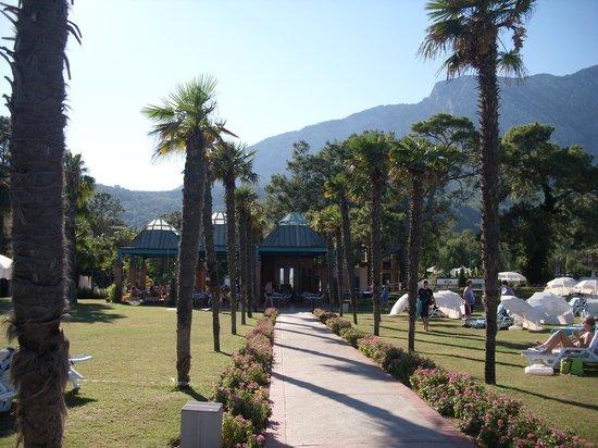 Club Salima: Blick auf die Poolbar