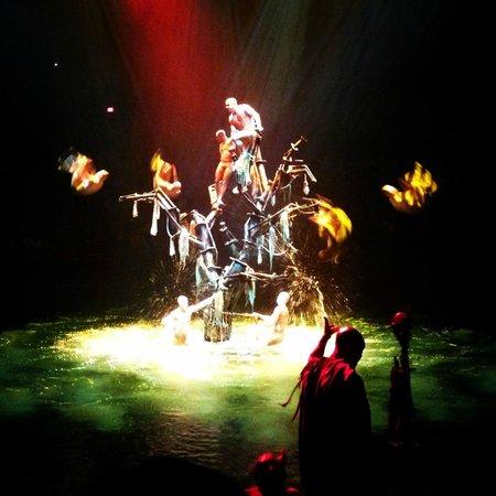 Le Reve - The Dream : February 2014