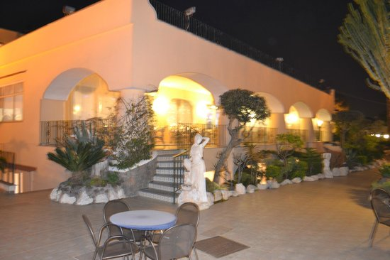 Hotel Terme Cristallo Palace: terrazza