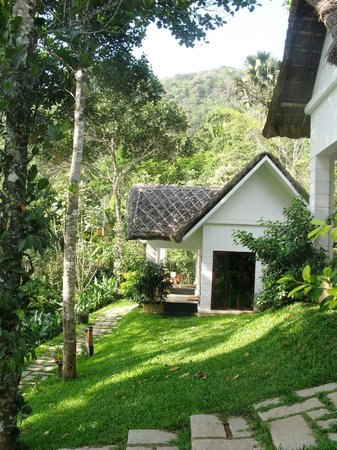 Niraamaya Retreats Cardamom Club - Thekkady : view from the garden