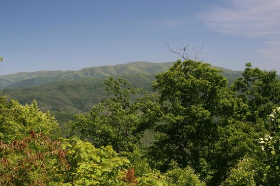 Chilhowee Mountain Retreat: Thunderhead from the back porch
