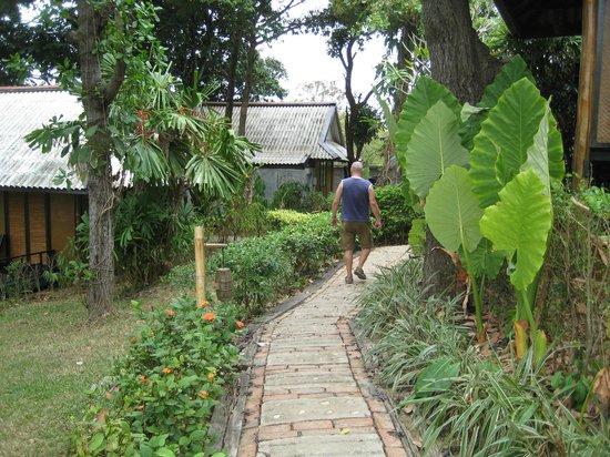 SriLanta Resort: Trädgården runt husen