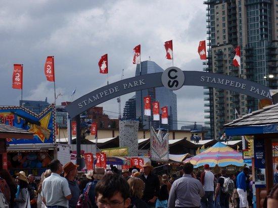 Calgary Stampede: Stampede grounds