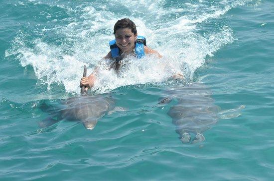 Dolphin Discovery Isla Mujeres: Dorsal fin ride!