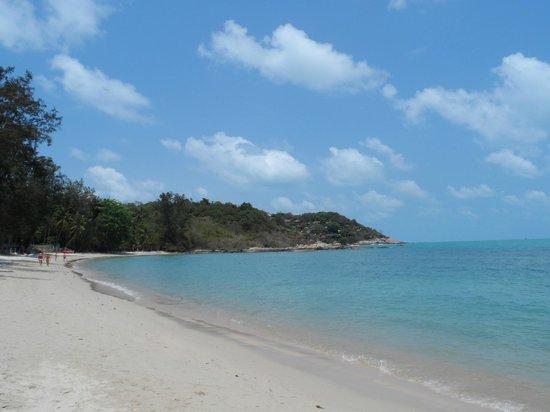SALA Samui Choengmon Beach Resort : beach