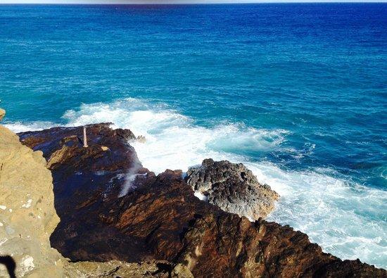 Aloha Private Tours : Beautiful beaches!