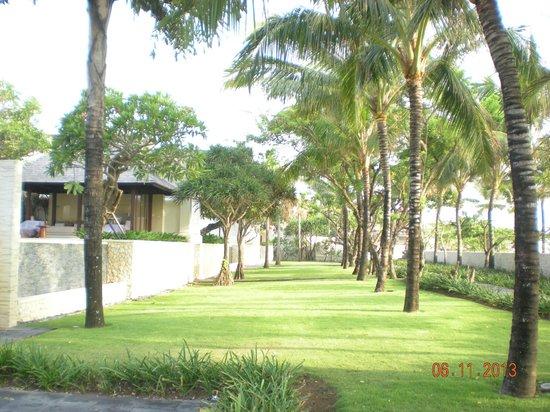 Club Med Bali: VEGETATION LUXURIANTE