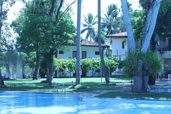 Mahaweli Reach Hotel : garden view