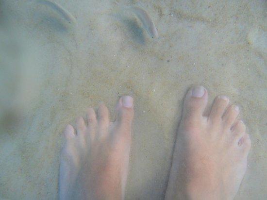 Lopes Mendes Beach: agua transparente  pececitos