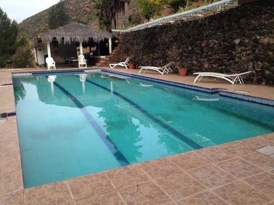 Casa Encinares Bed and Breakfast: The pool