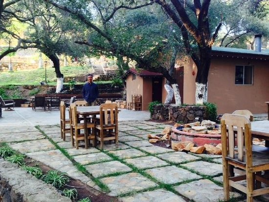 Casa Encinares Bed and Breakfast: Beautiful, spacious patio