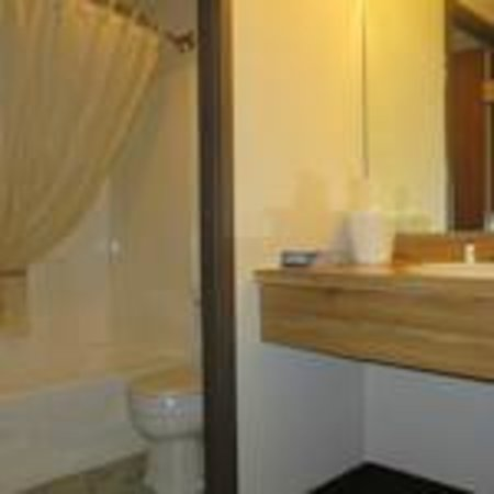 Voyageur Inn and Conference Center: Bathroom