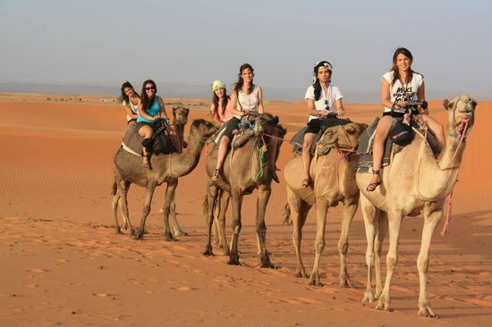 Ecomusee Berbere : Camel Trips