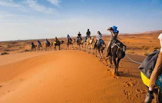 Ecomusee Berbere: Camel Trekking and Night in desert
