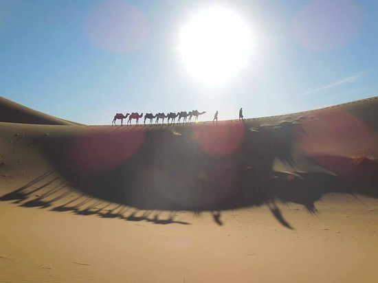 Ecomusee Berbere: Tours in Merzouga