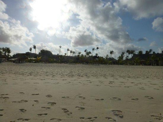 Manchebo Beach Resort & Spa: View from beach