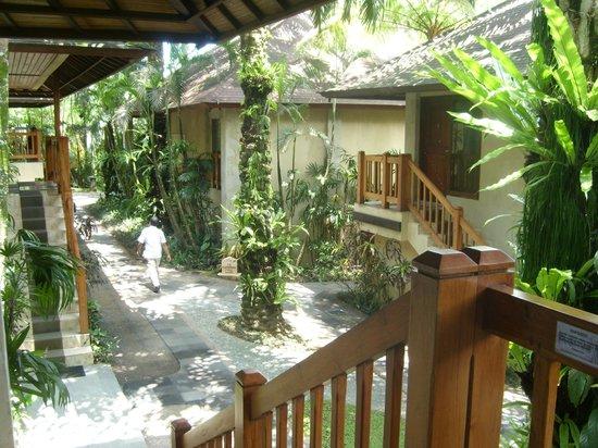 Mason Elephant Lodge: Lodge area