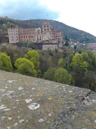 Schloss Heidelberg: Castello di Heidelberg