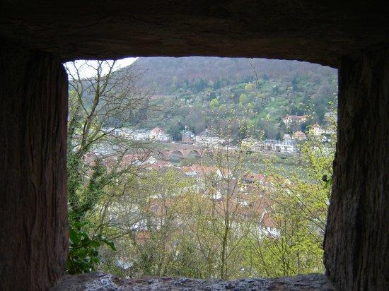 Schloss Heidelberg: scorcio dall'alto