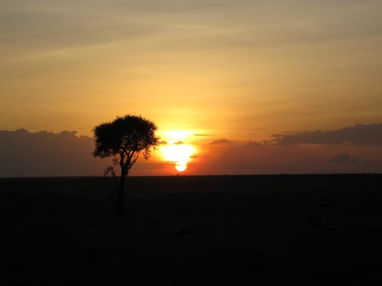 Porini Mara Camp: sunset