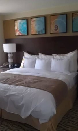 Sanibel Harbour Marriott Resort & Spa : King Suite