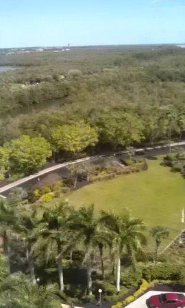 Sanibel Harbour Marriott Resort & Spa: View