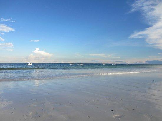 Forest Dream Resort: Diani Beach