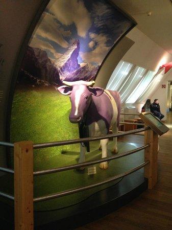 Schokoladenmuseum Köln: Museo del chocolate, Colonia, Alemania