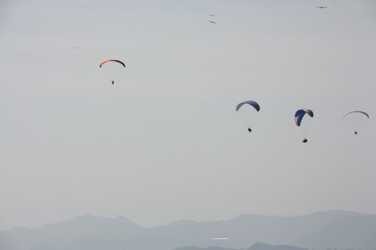 Sunrise Paragliding: Flies with eagles