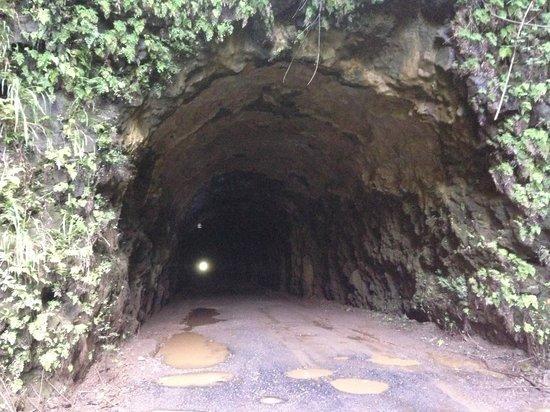 Kauai ATV Tours: 1/2 mile tunnel