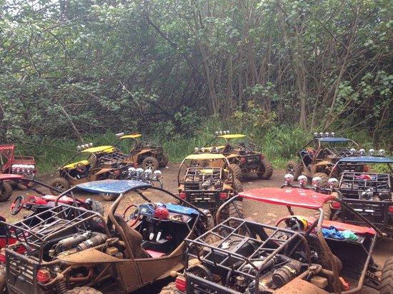 Kauai ATV Tours: ATV yard at the waterfall.