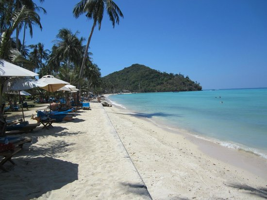 Phi Phi Island Village Beach Resort : Beach