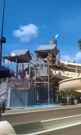 Gaylord Palms Resort & Convention Center: Kids waterpark
