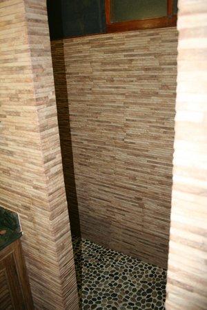 Hotel Buena Vista: Shower stall