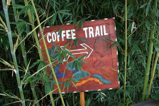 Hotel Buena Vista: Coffee Trail