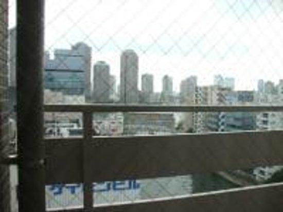 Dormy Inn Tokyo Hatchobori: 亀島川が窓から見えます