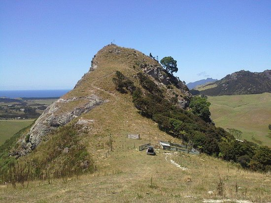 Whangarei Heads, New Zealand: the hill