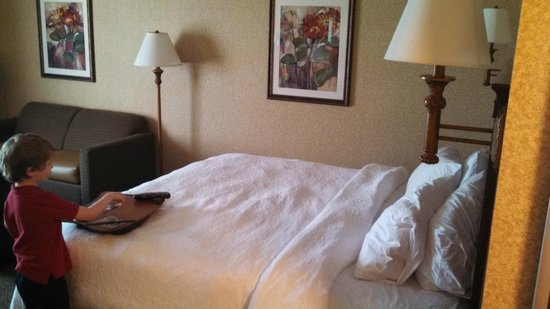 Hampton Inn & Suites Toledo-Perrysburg : Bed