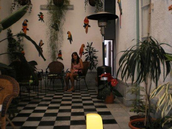 Los Jardines Colgantes de Babilonia Hostel Montevideo: Segunda Sala de estar antes del patio: ideal para tomar mate!