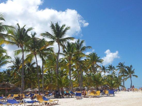 Catalonia Bavaro Beach, Casino & Golf Resort : Preciosa Playa