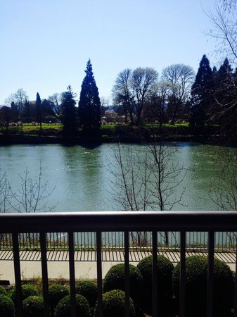 Valley River Inn: View from room - Willamette River
